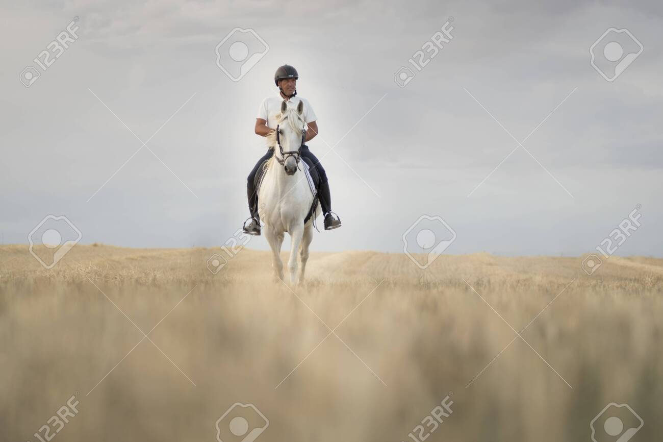 Rider On Horseback Walking Through A Mowed Cereal Field With Stock Photo Picture And Royalty Free Image Image 153894915