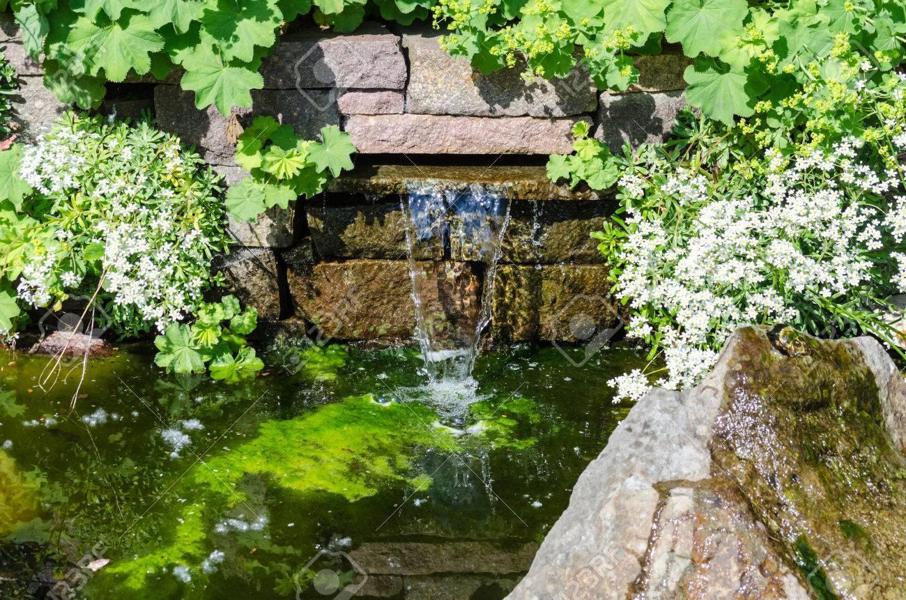 Surplombant une petite cascade et étang de jardin.