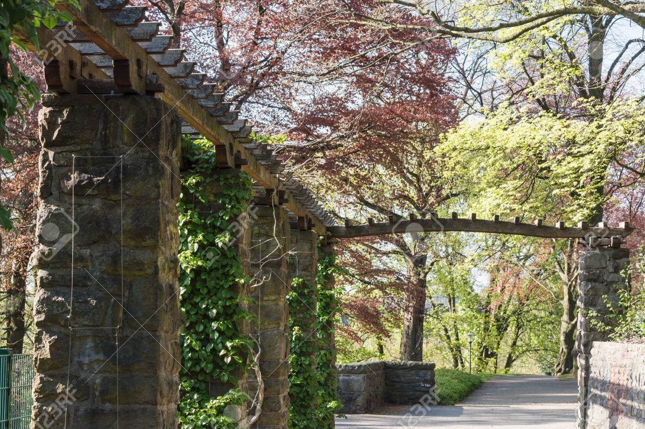 Wooden Pergola Covered With Ivy In A Park. Stock Photo, Picture ...