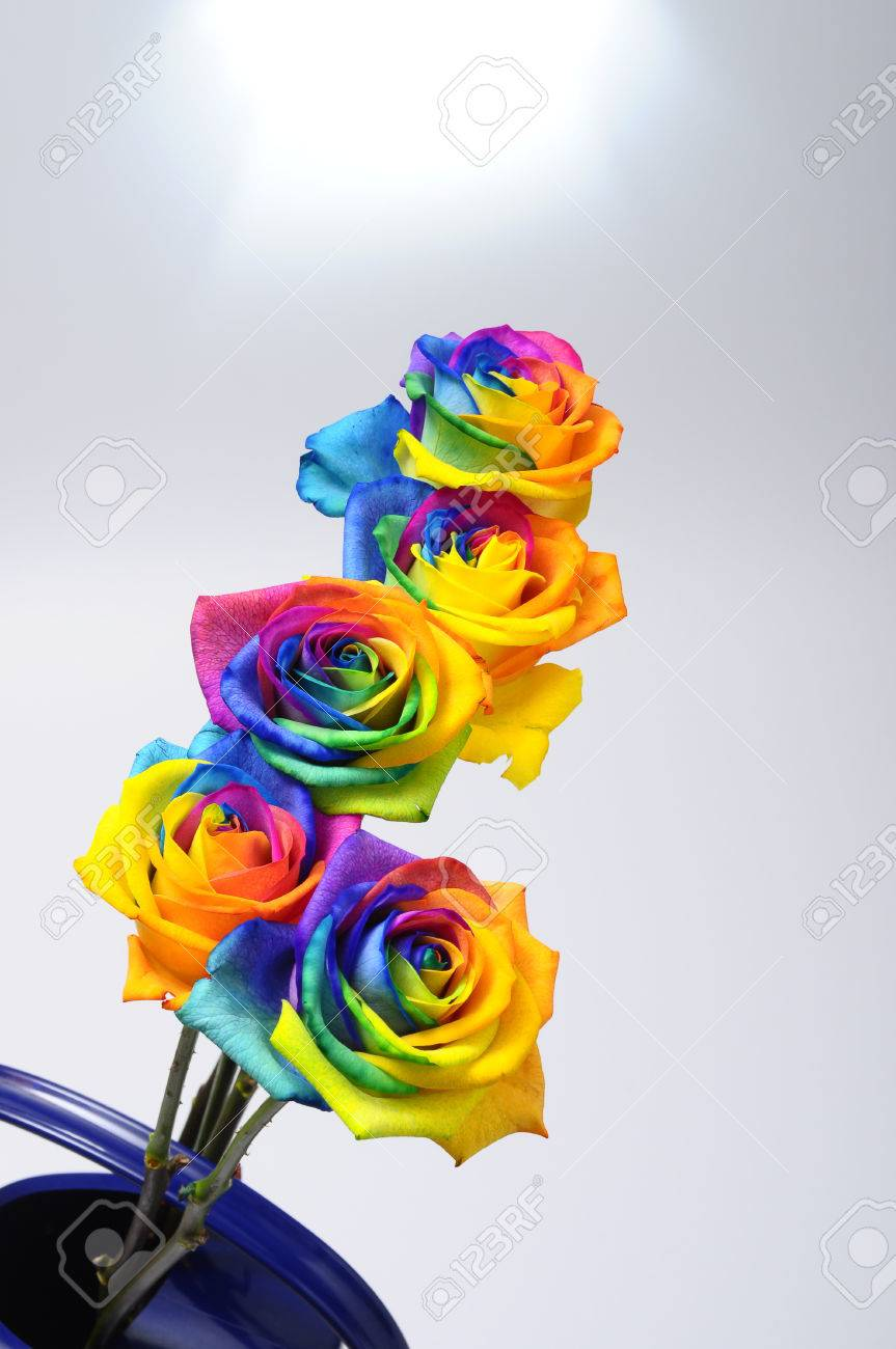 Bouquet Of Happy Flower Rainbow Rose With Colored Petals Stock Photo ...