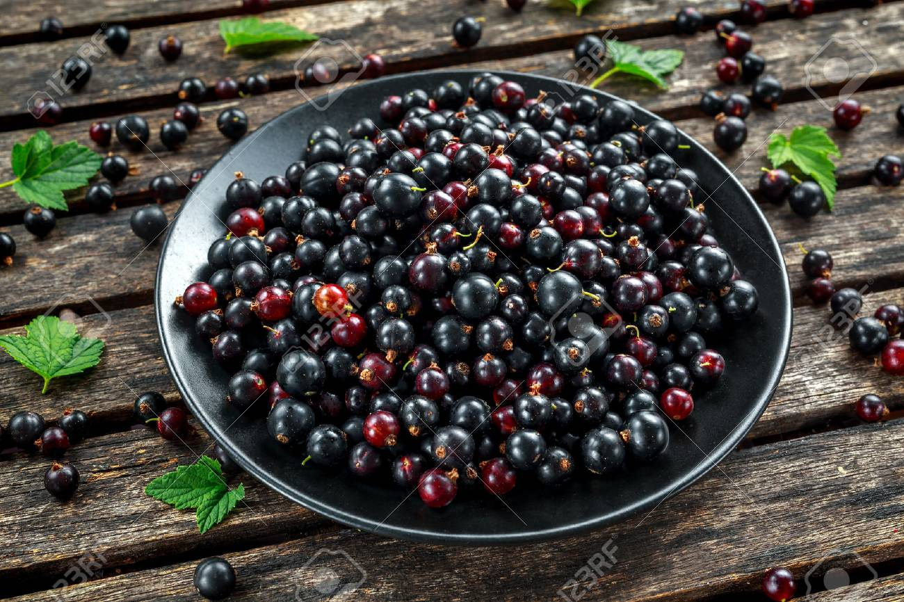 Fresh Juicy black currants in a plate on wooden rustic table - 80903187