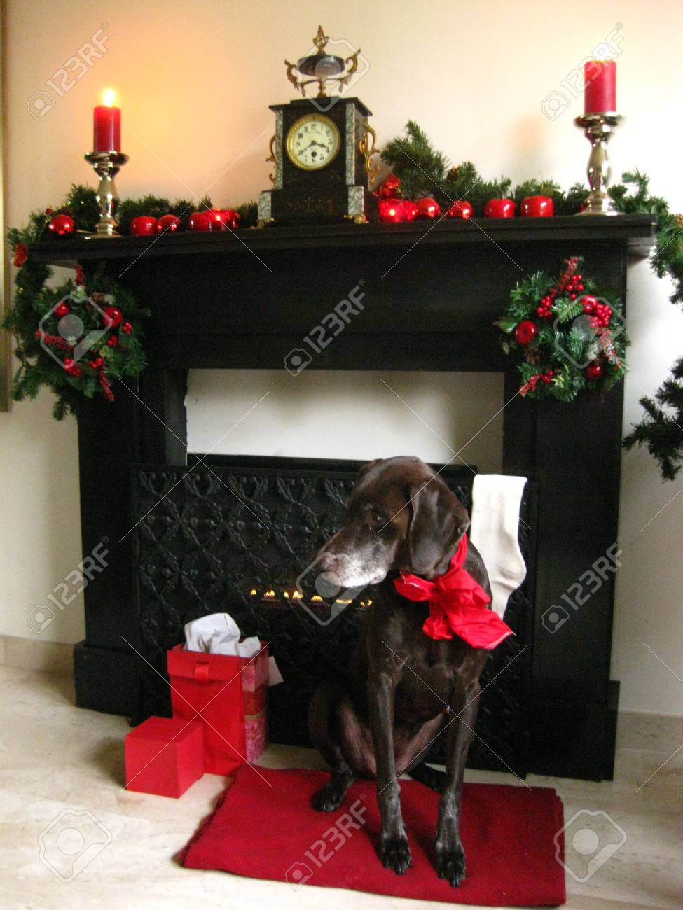 A Christmas fireplace Stock Photo - 3853733