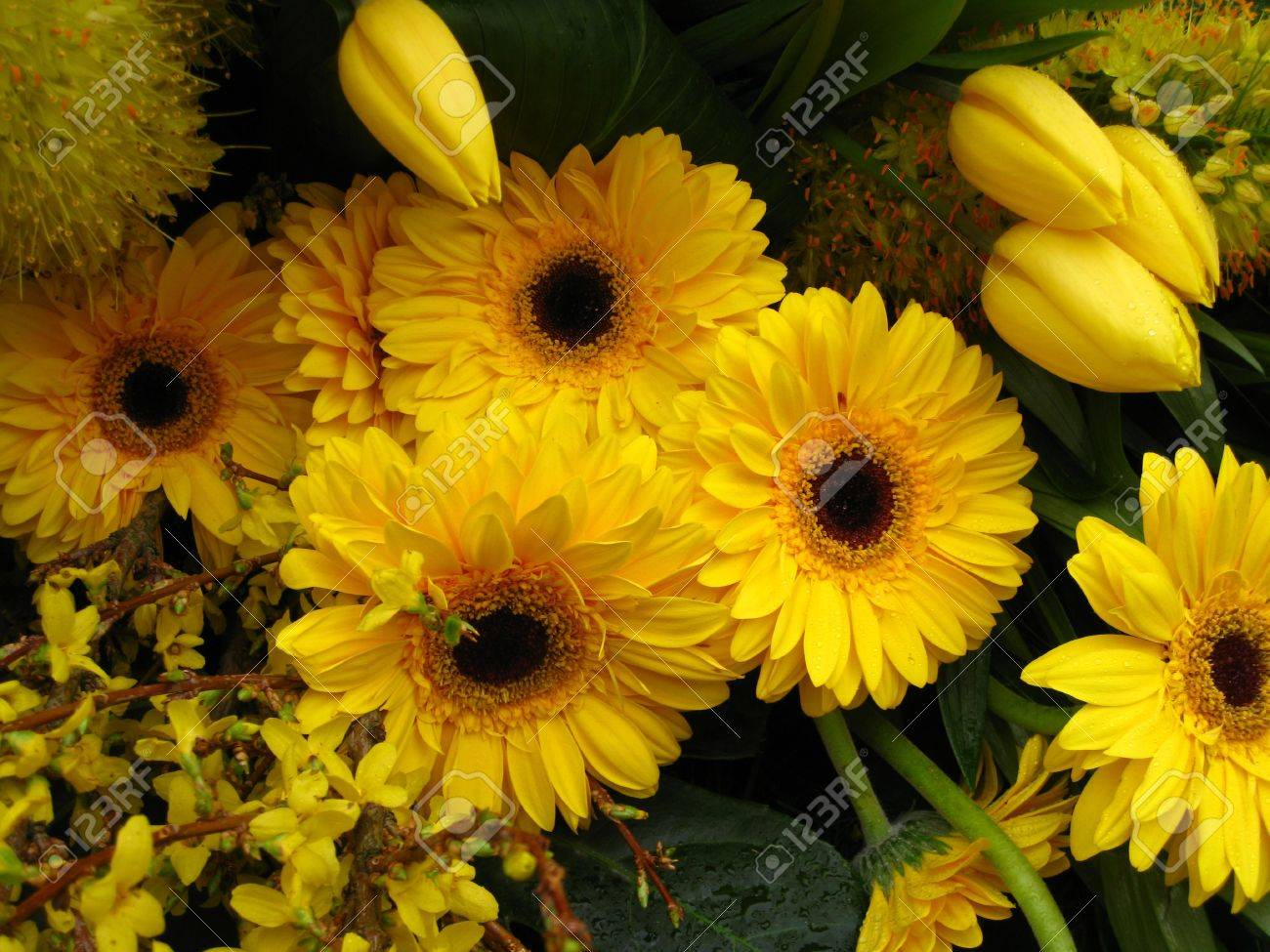 Yellow Flower Arrangement On Floral Parade Stock Photo Picture And