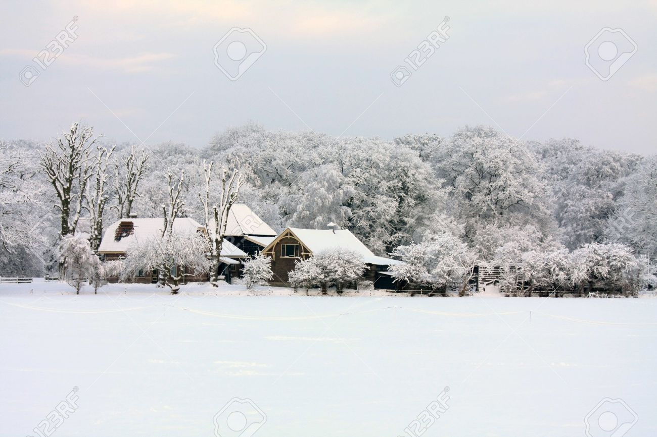A farm in a forest, meadow covered with snow and frozen trees Stock Photo - 6230096