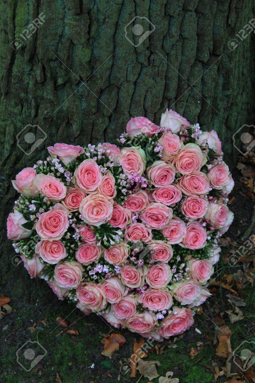 Pink Heartshaped Sympathy Flowers Near A Tree Stock Photo Picture