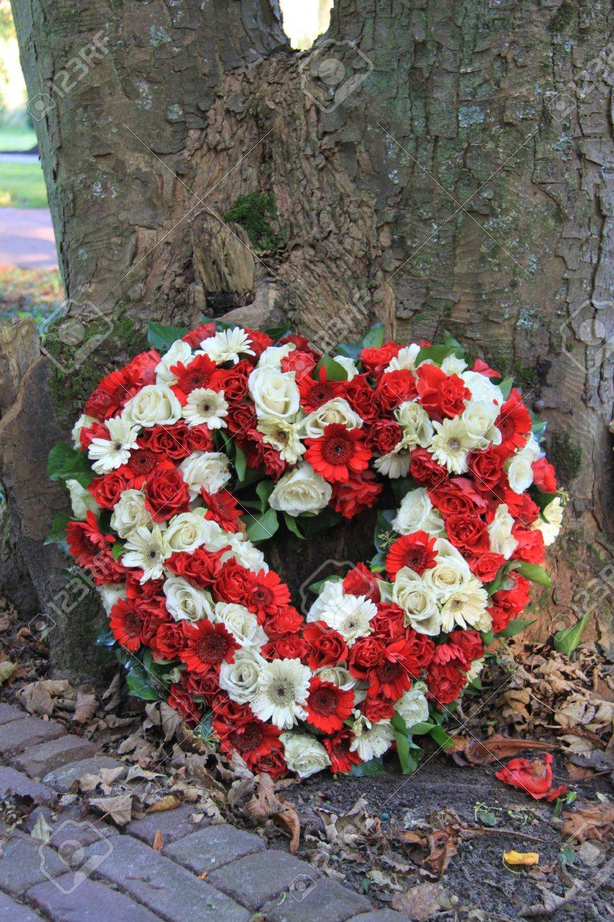 Heart shaped sympathy flower arrangement with red and white flowers heart shaped sympathy flower arrangement with red and white flowers stock photo 12072903 mightylinksfo