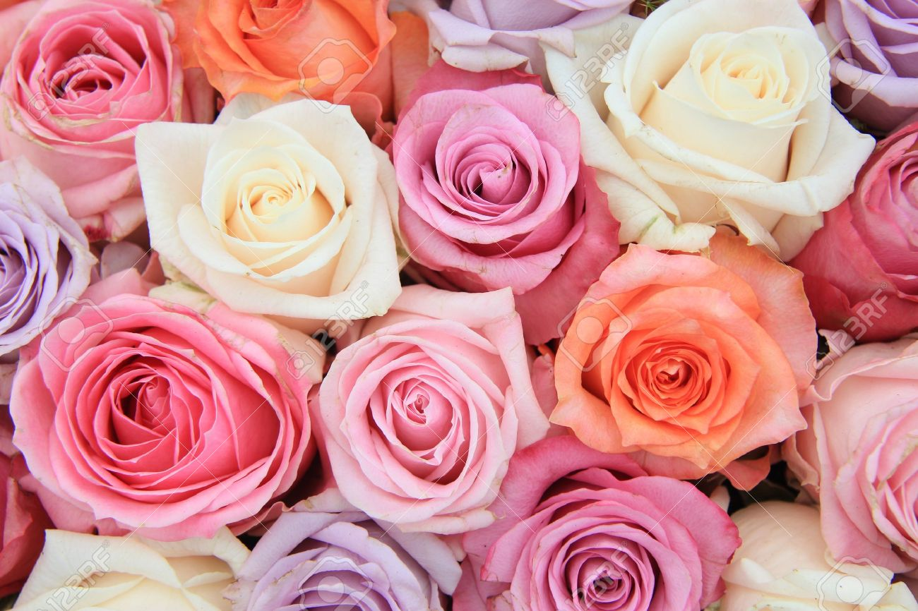 Perfect Bridal Flower Arrangement With Roses In Many Pastel Colors Stock  IZ98