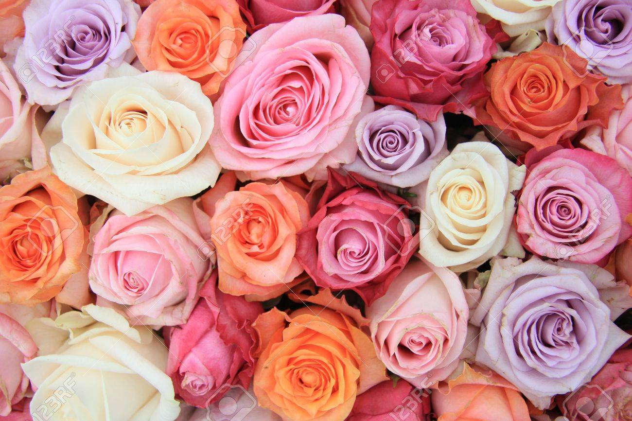 Bridal flower arrangement with roses in many pastel colors - 13093709