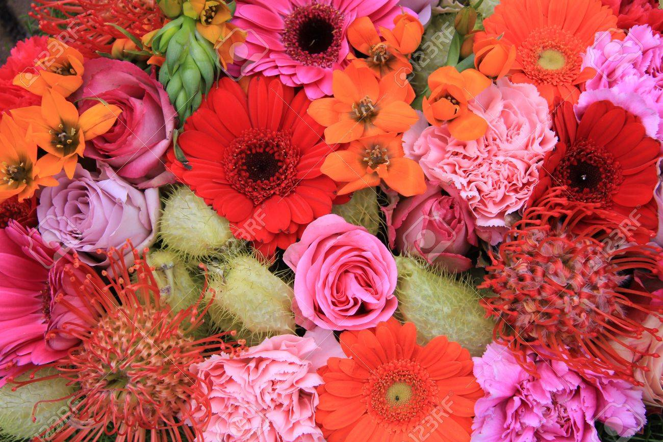Red Pink And Orange Flower Arrangement With Roses Gerberas Stock