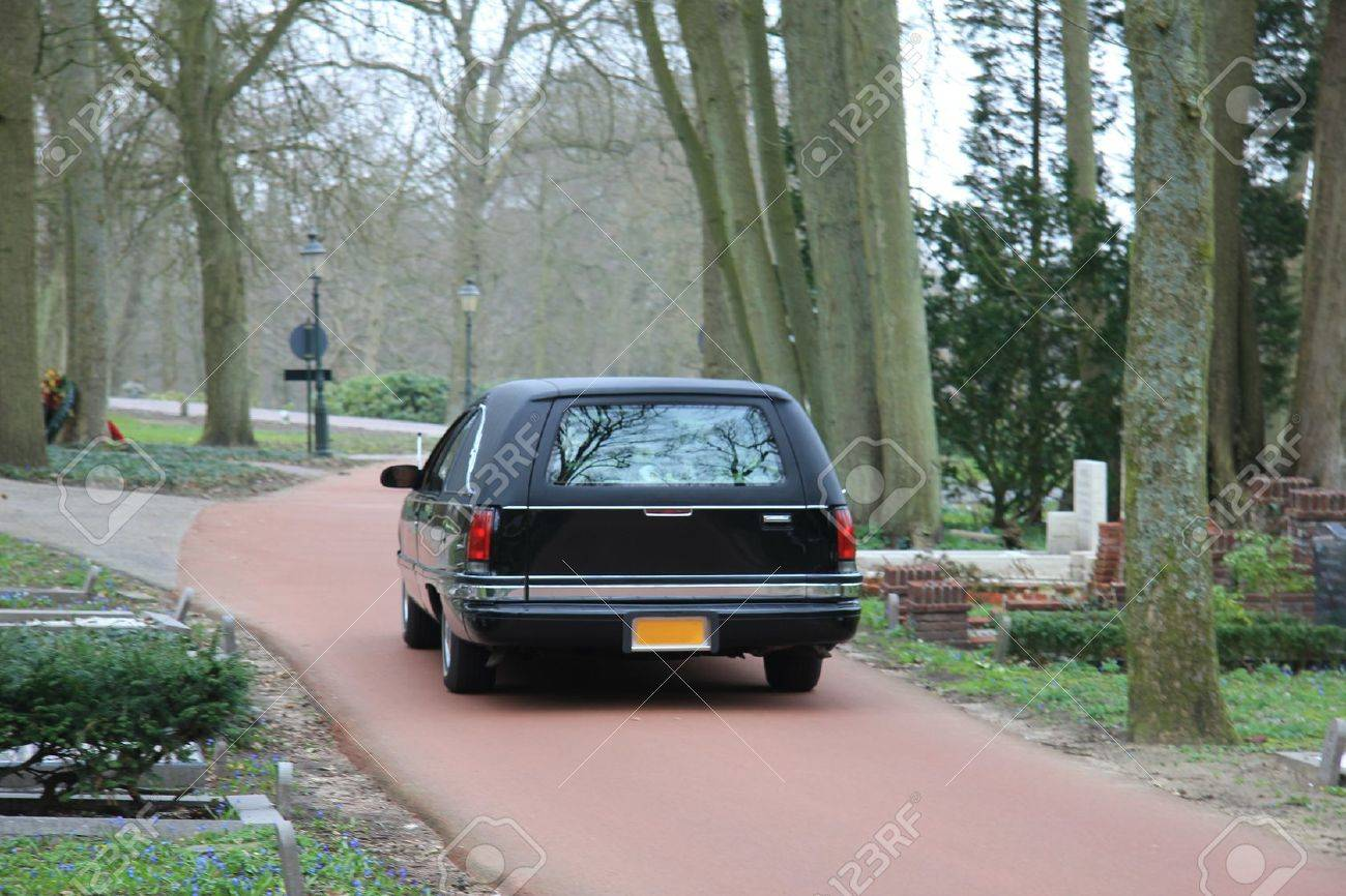A black hearse on a forest cemetery, driving slow - 13198308