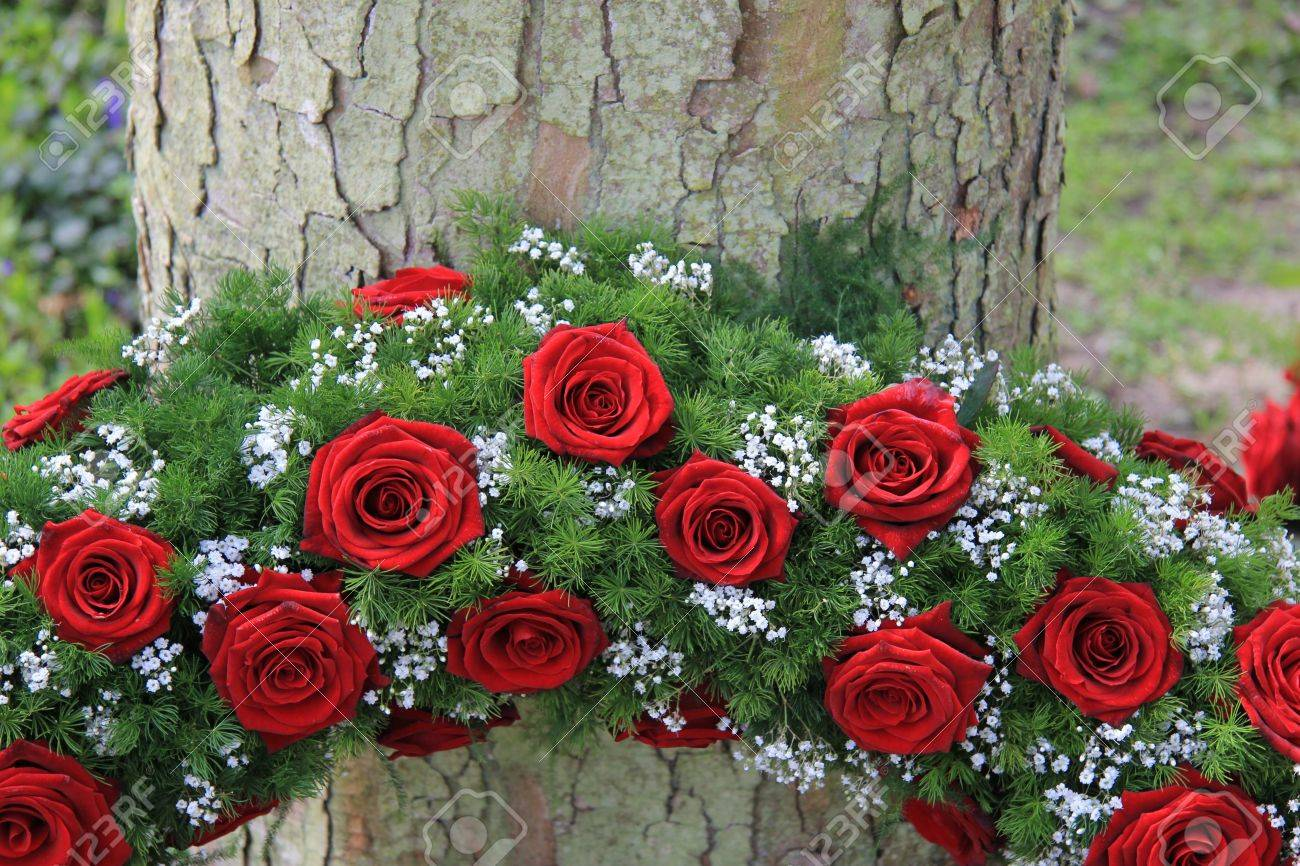 Red roses and white gypsophila in a funeral wreath detail near red roses and white gypsophila in a funeral wreath detail near a tree stock photo izmirmasajfo
