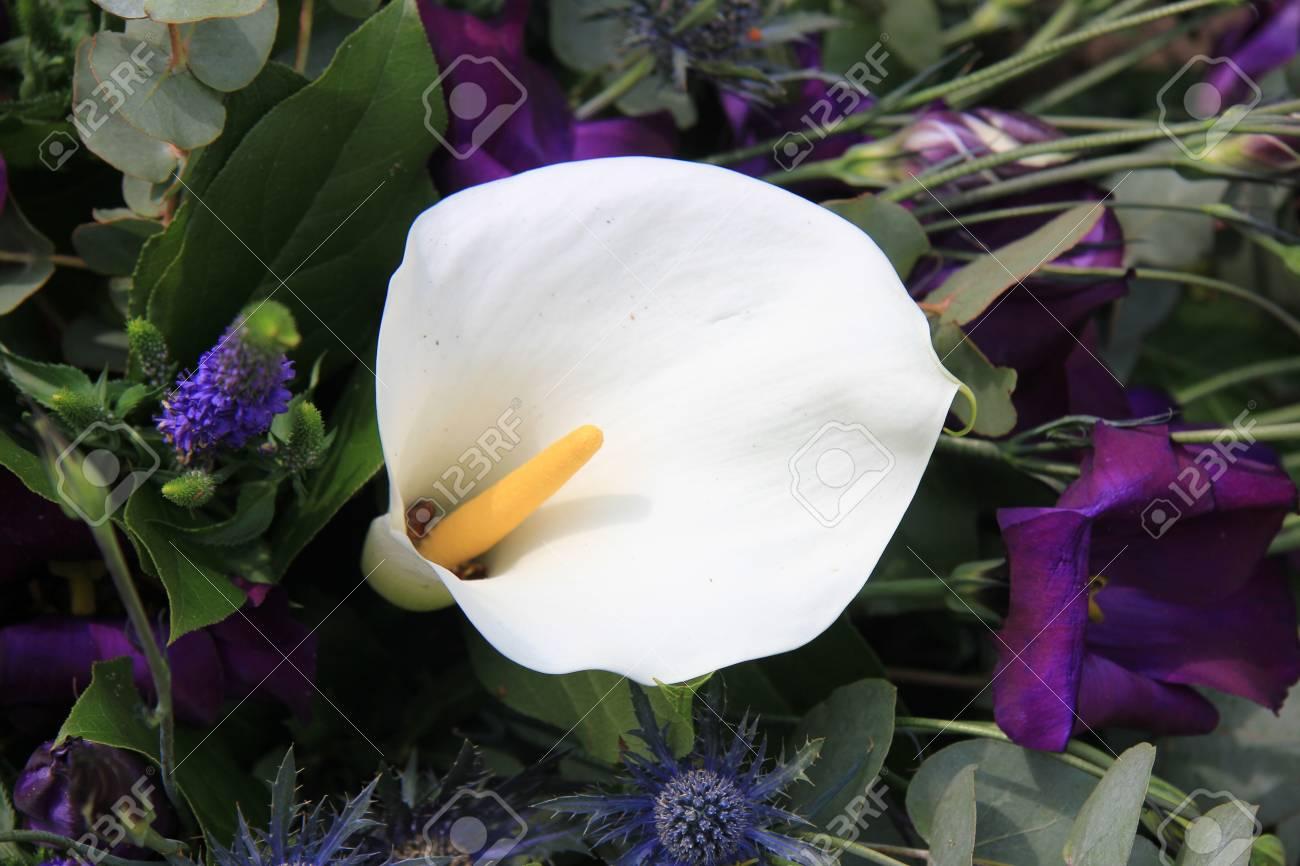 big white arum en arrangement floral banque d'images et photos