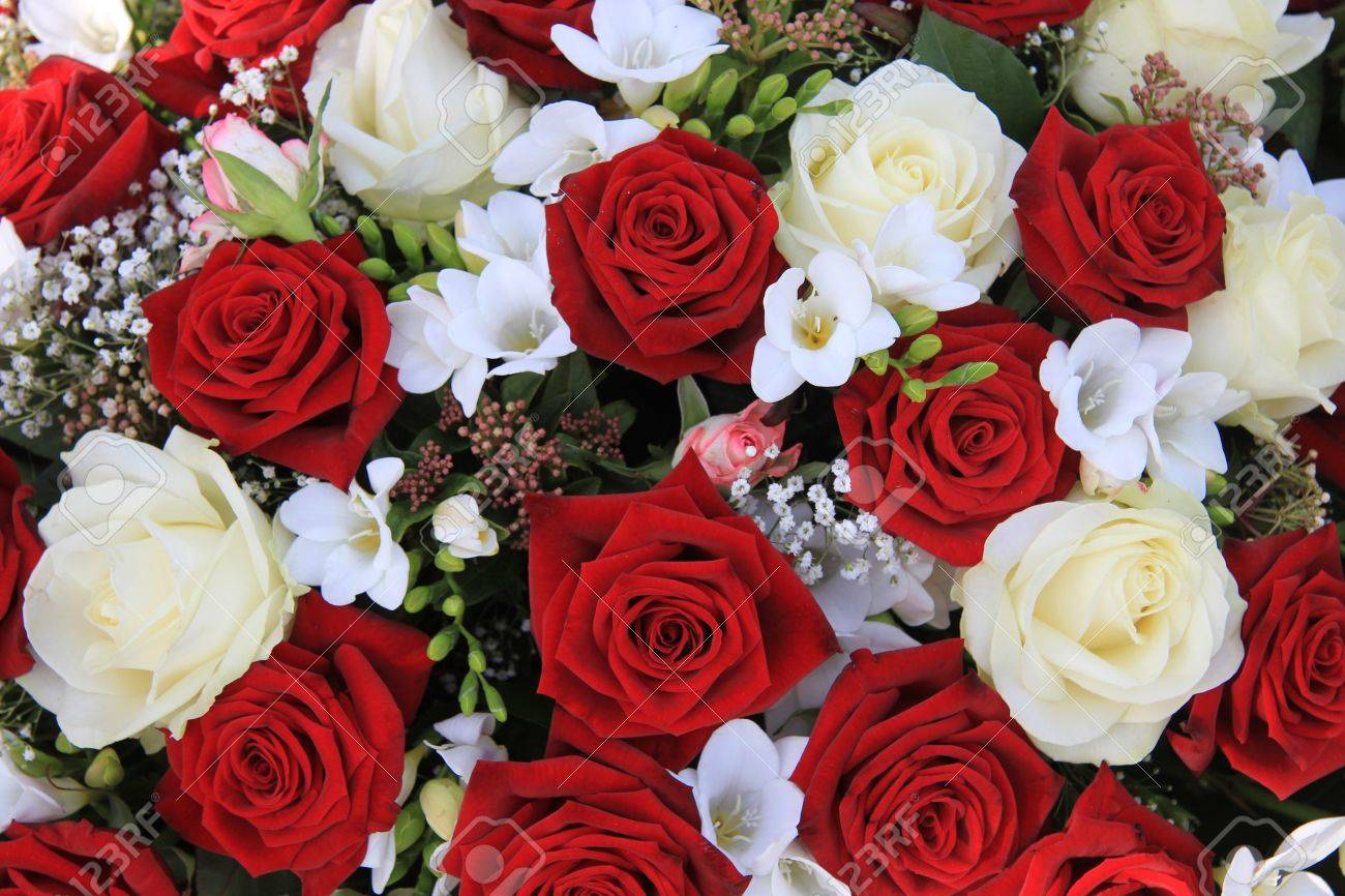 Fantastic Classic Combination Of Big White And Red Roses In A Bouquet Stock Largest Home Design Picture Inspirations Pitcheantrous