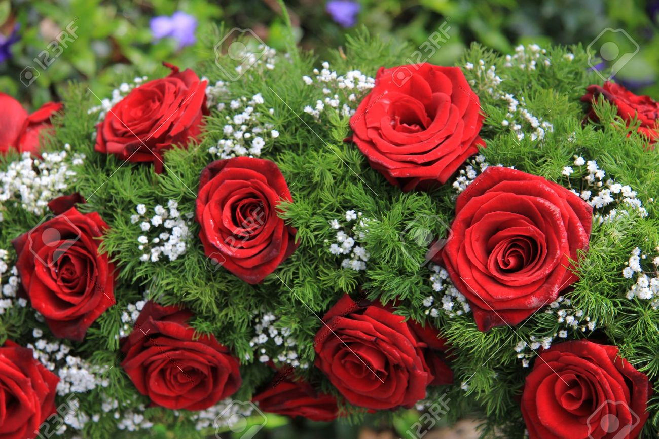 Red roses and white gypsophila in a funeral wreath stock photo red roses and white gypsophila in a funeral wreath stock photo 14735124 izmirmasajfo