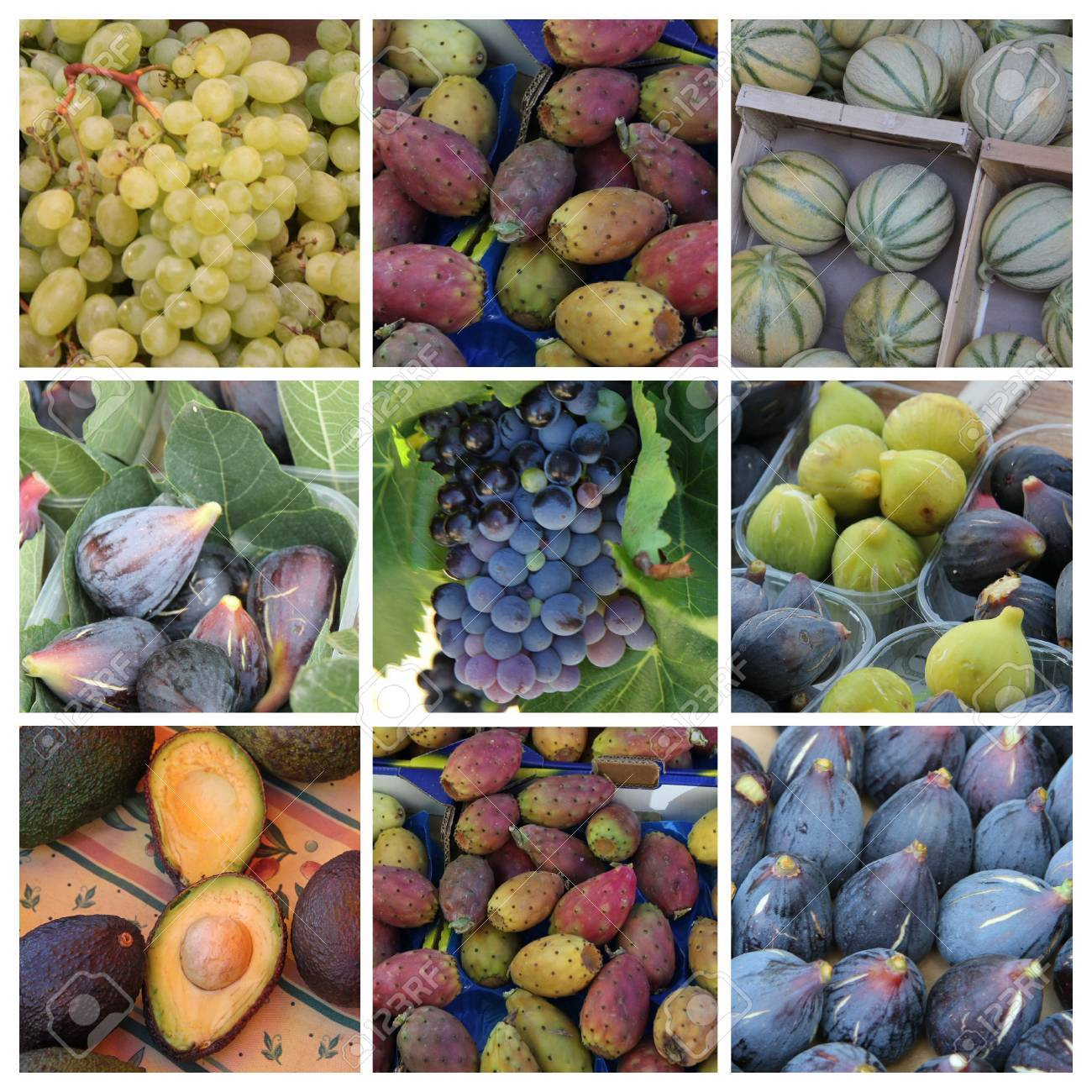 Nine different XL images of green and purple fruits Stock Photo - 15357519