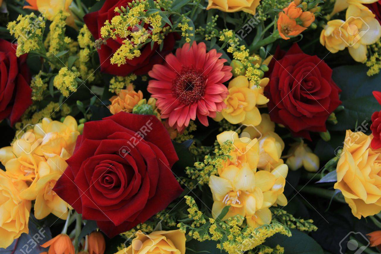 Red and yellow roses and yellow freesias in a flower arrangement red and yellow roses and yellow freesias in a flower arrangement stock photo 16187079 mightylinksfo