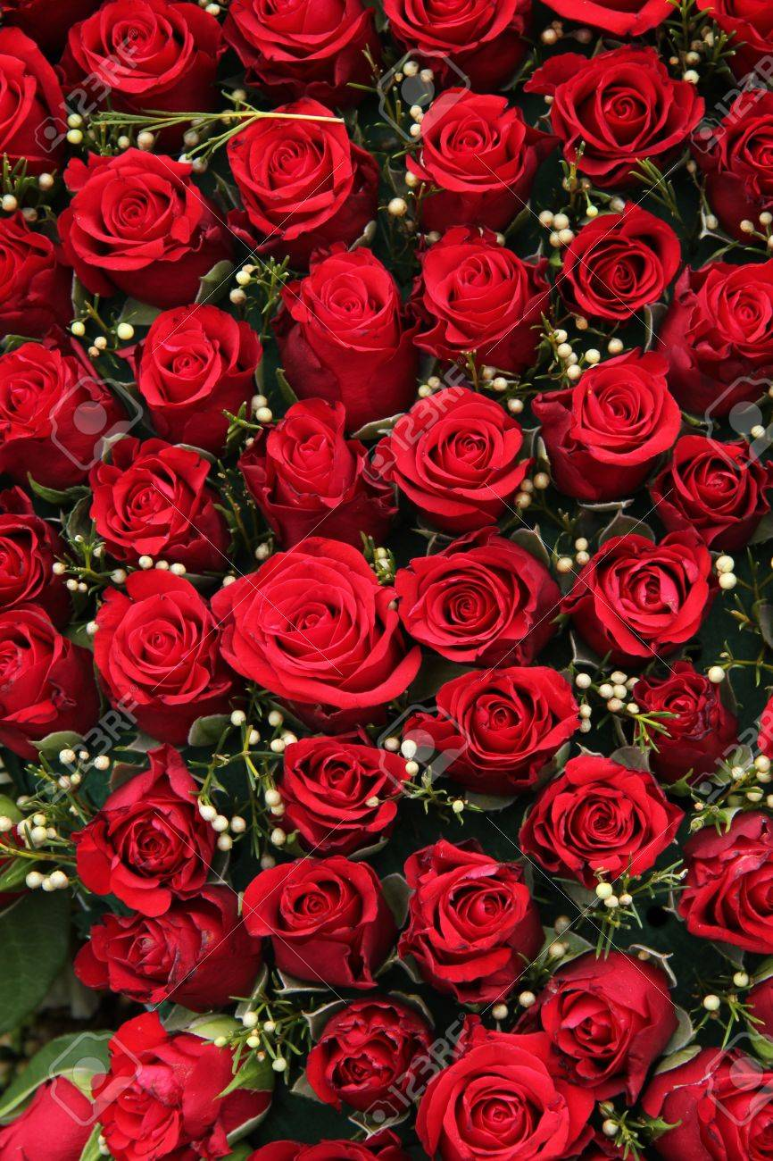 Group of red roses and small white berries wedding decorations group of red roses and small white berries wedding decorations stock photo 18345834 junglespirit Choice Image