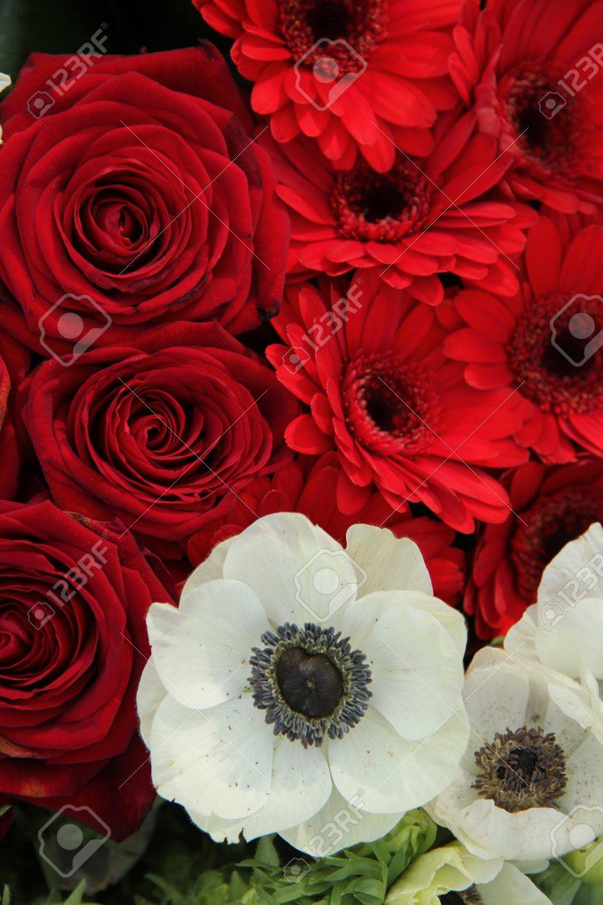 Red And White Flower Arrangement With Roses Gerberas And Anemones