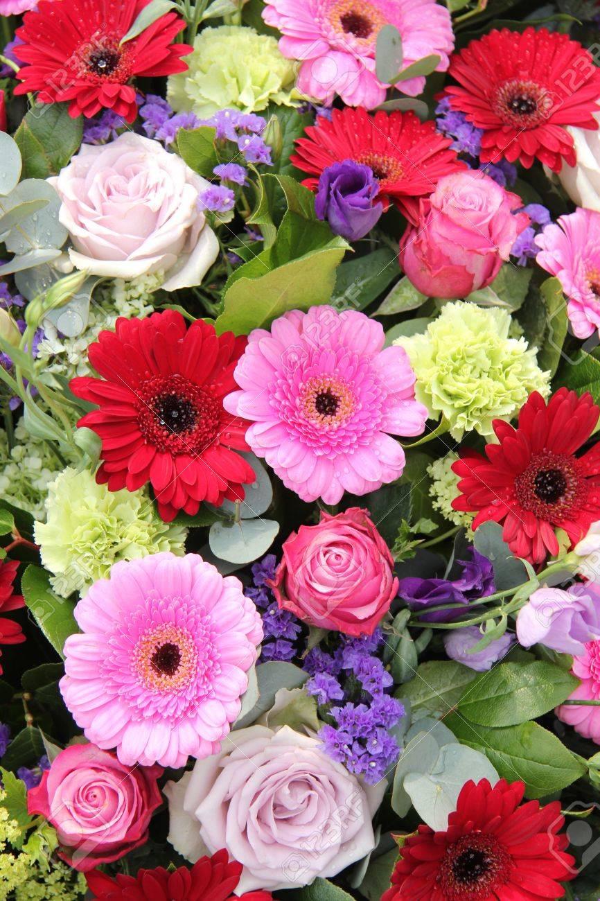 Gerberas Rojas Y Rosadas, Junto Con Las Rosas Púrpuras Y Otras ...