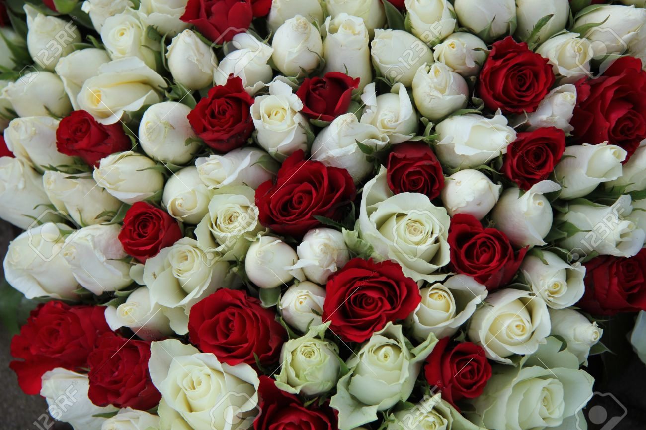 Red And White Roses In A Bridal Table Centerpiece Stock Photo   19224907