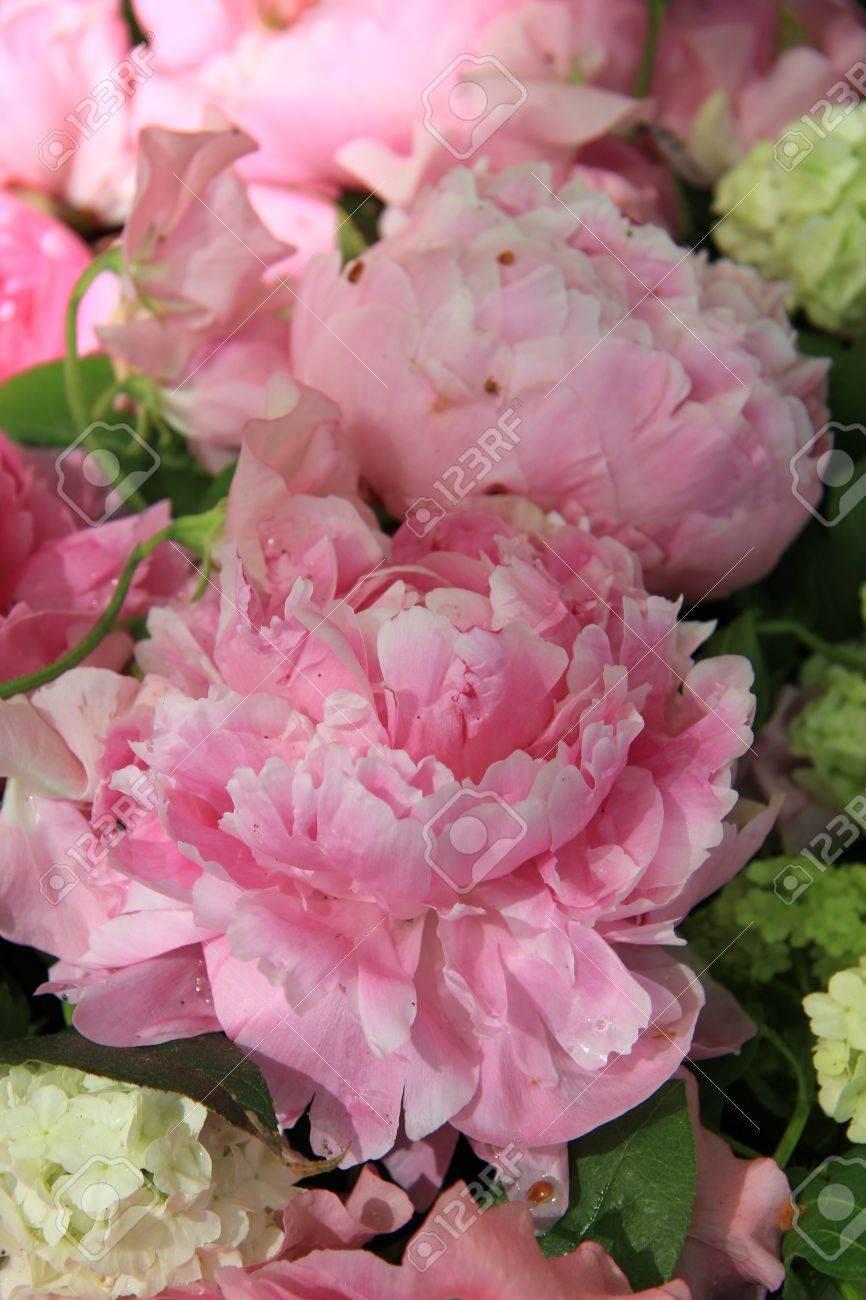 Big Pink Peonies In A Wedding Flower Arrangement Stock Photo ...