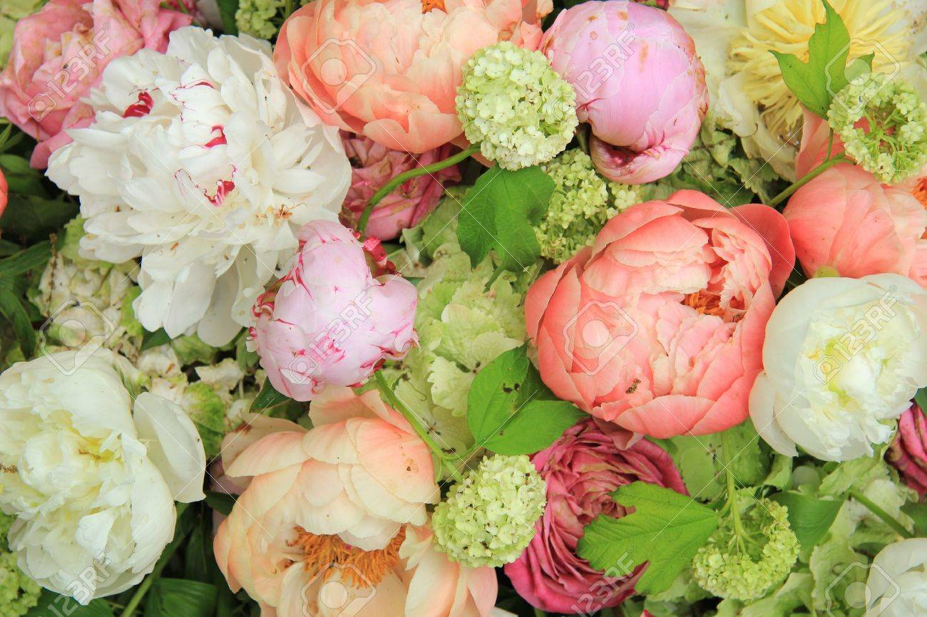 Peonies in various shades of pink and white in a floral wedding arrangement - 20037847