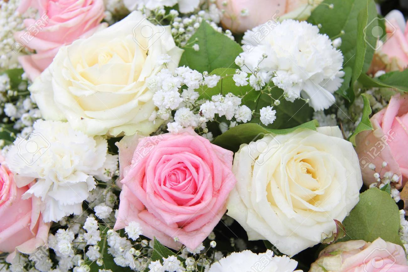 Famous white plains flowers contemporary images for wedding gown creative flowers white plains best flower 2017 mightylinksfo Choice Image