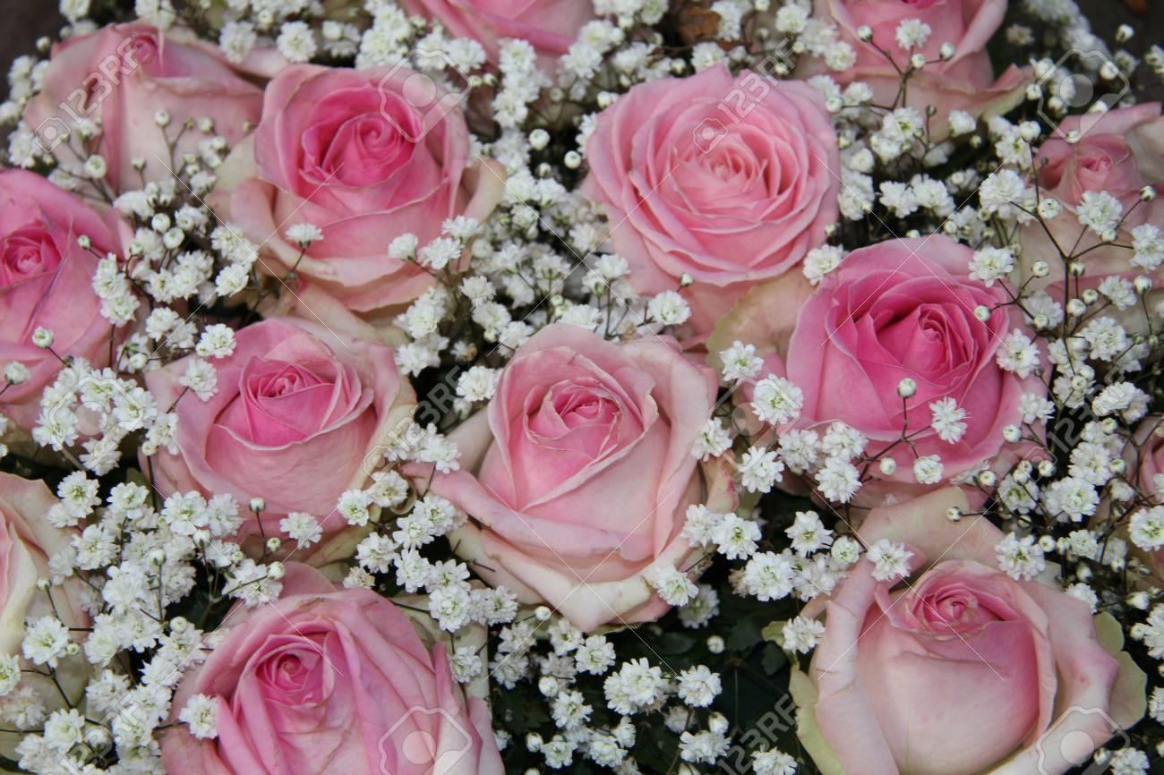 Wedding Flowers Pink Roses And White Gypsophilia Stock Photo