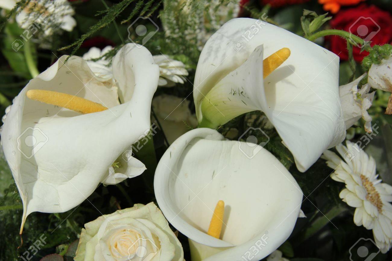 Weisse Calla Lilien In Einem Weissen Blumen Arrangement Hochzeit