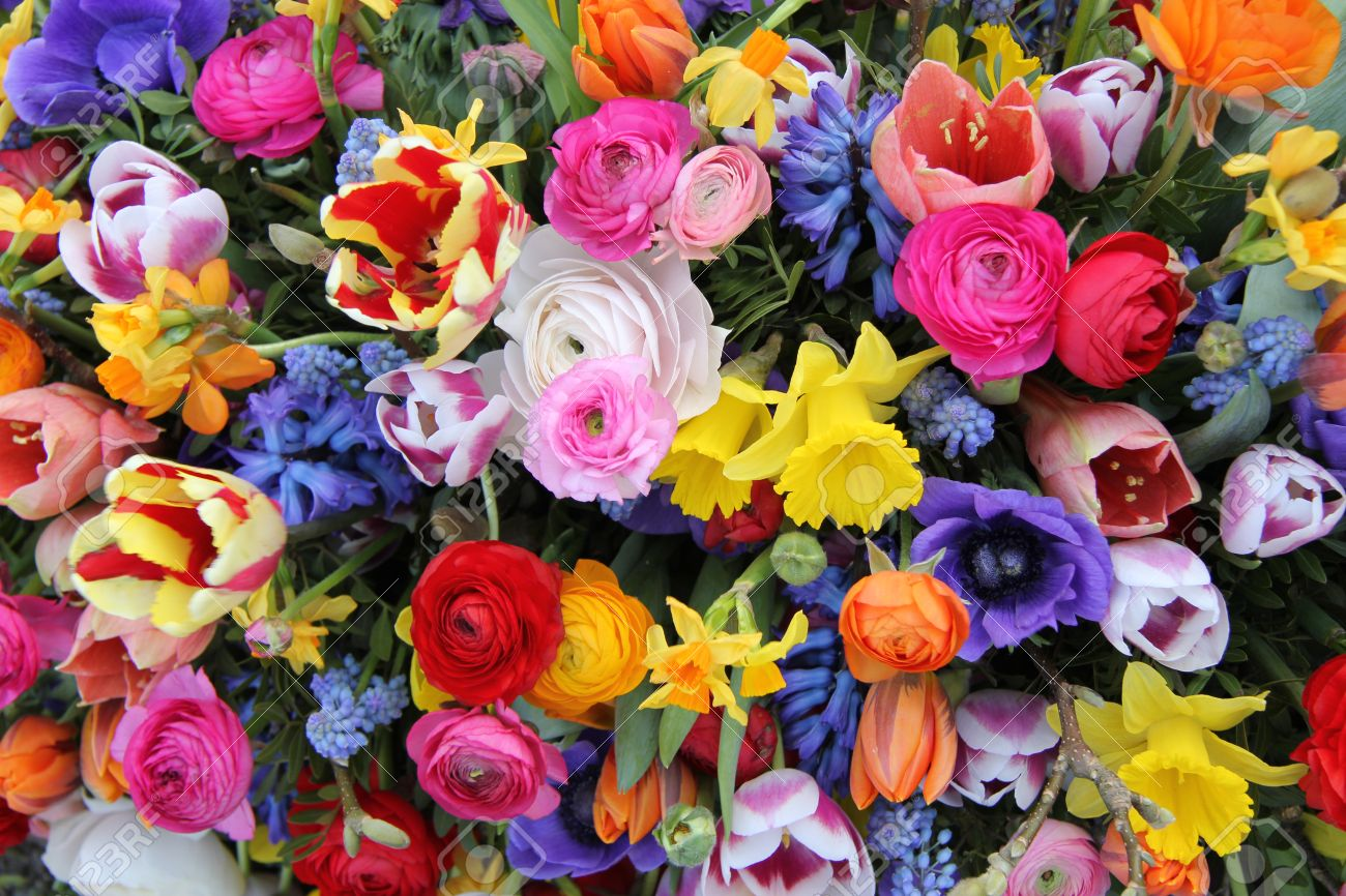 Colorful Mixed Bouquet With Various Spring Flowers Stock Photo ...