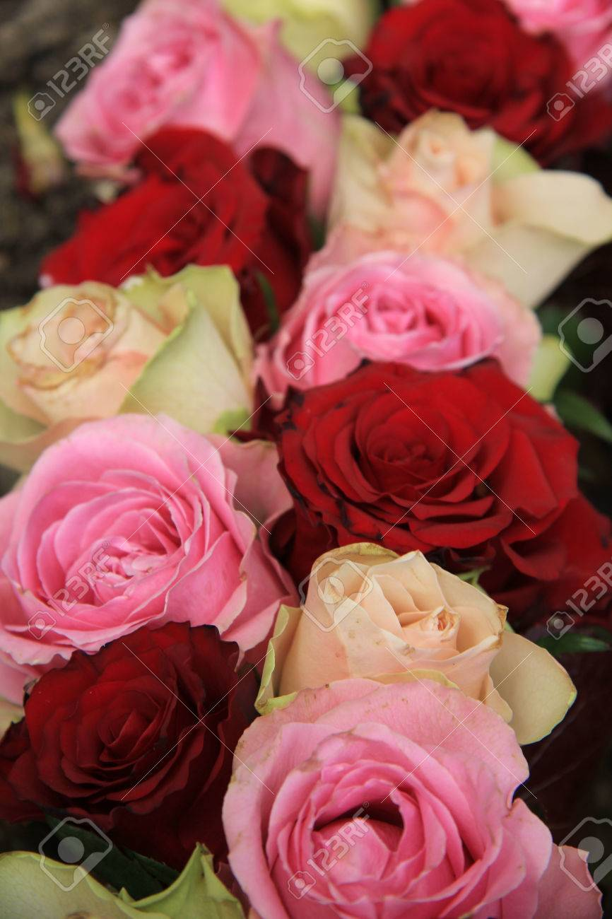 Wedding Flowers In Different Shades Of Pink And Red, Roses Stock ...