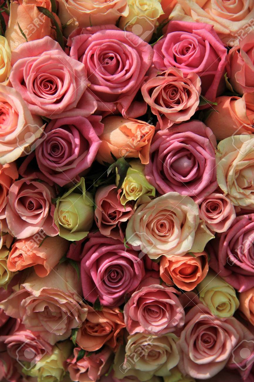 Group Of Roses In Various Shades Of Pink Wedding Floral Decorations