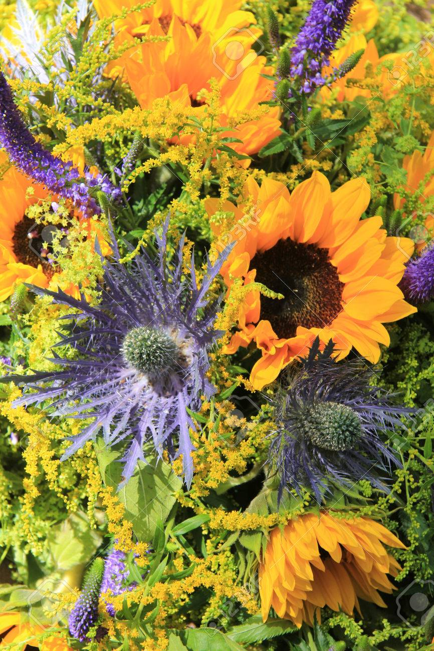 Blue And Yellow Wedding Flowers Sunflowers Eryngium Or Sea Holly Stock Photo