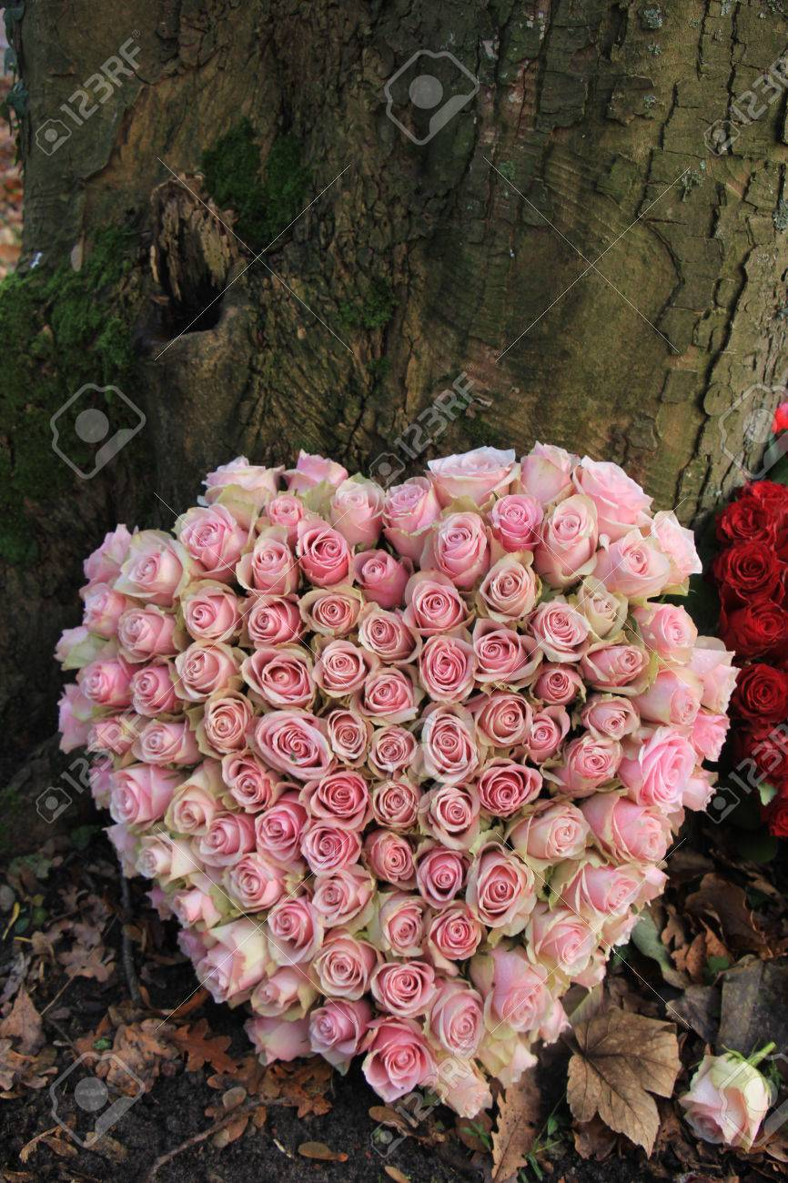 Heart shaped sympathy or funeral flowers near a tree stock photo heart shaped sympathy or funeral flowers near a tree stock photo 68737350 izmirmasajfo