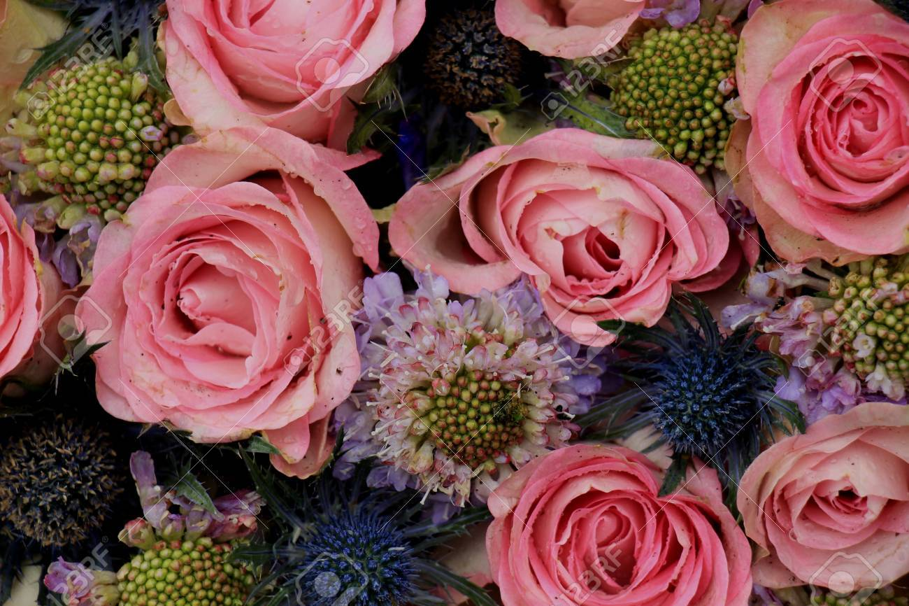 Pink Roses And Blue Sea Holly In A Wedding Flower Arrangement Stock