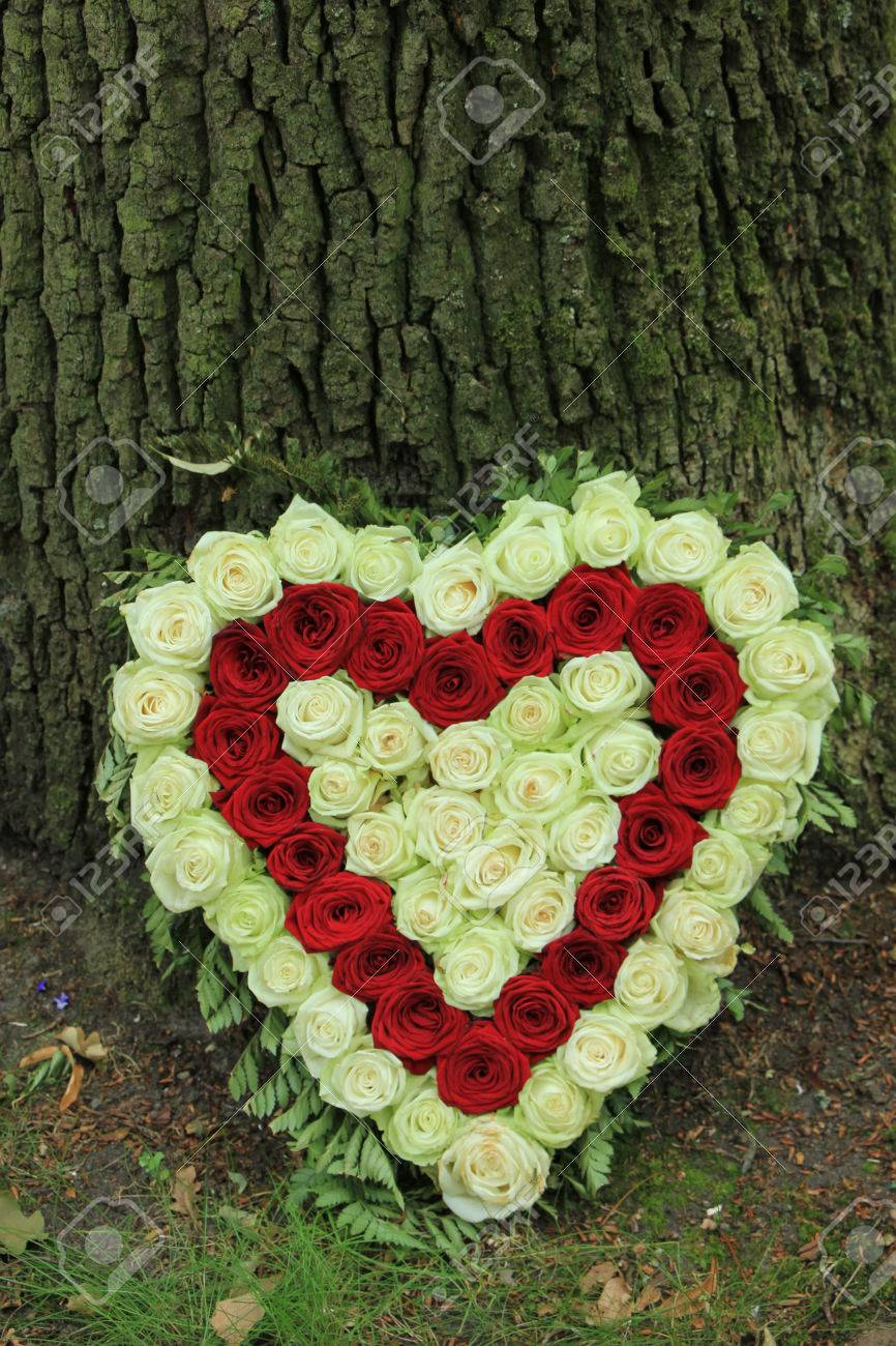 Red and white heart shaped sympathy flowers or funeral flowers red and white heart shaped sympathy flowers or funeral flowers near a tree stock photo izmirmasajfo Image collections