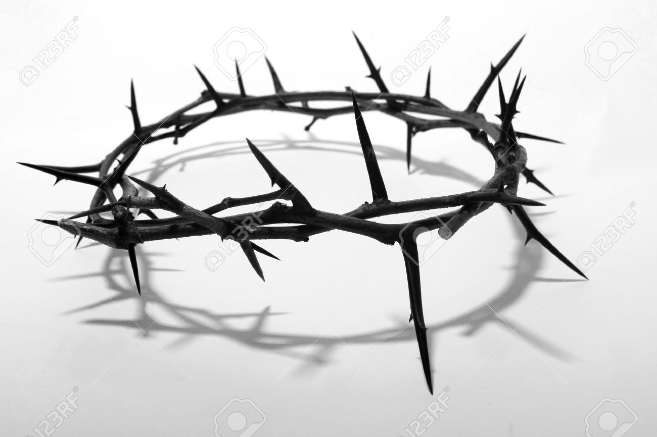 crown of thorns Stock Photo - 11450195