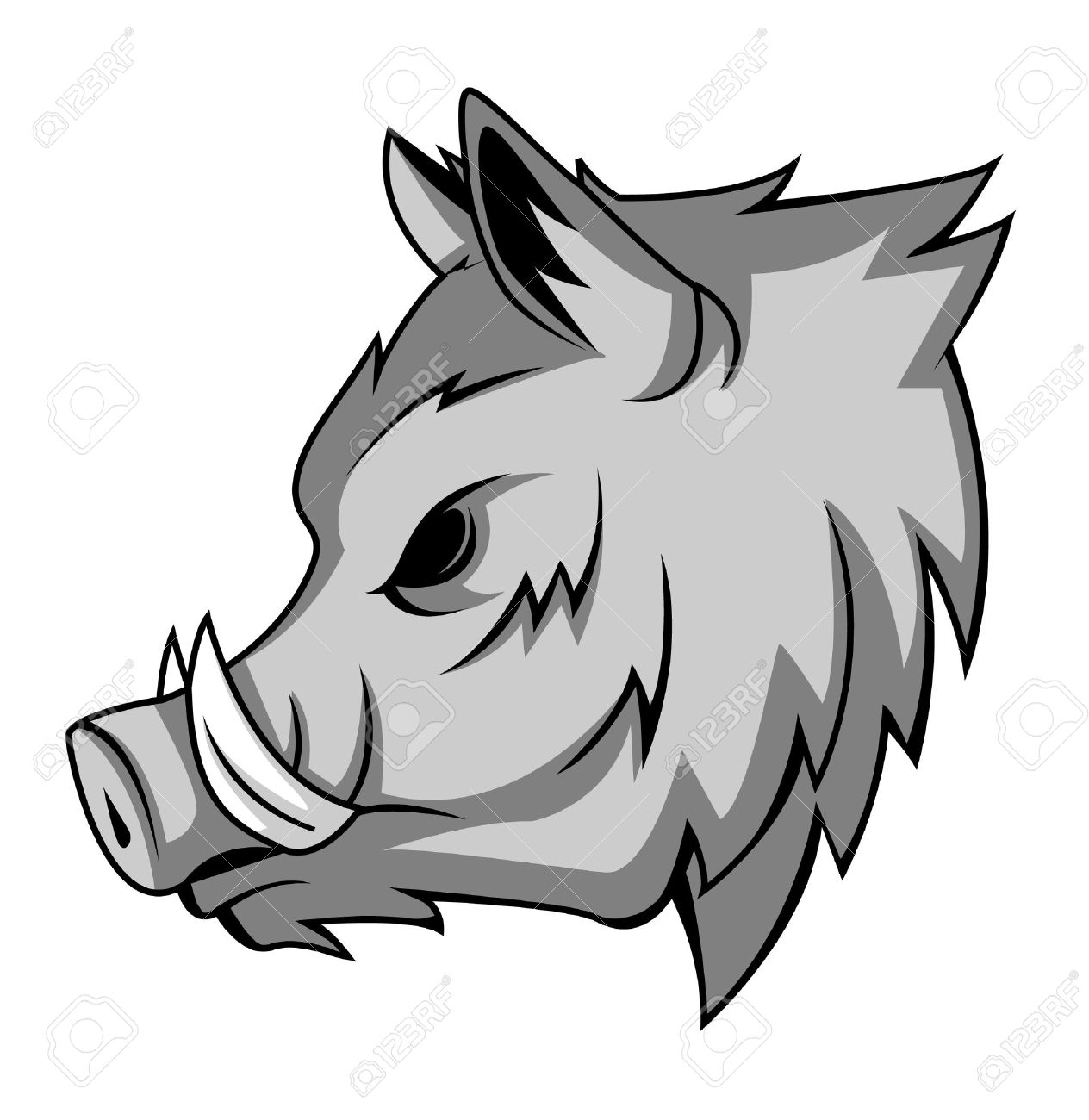 Wild boar royalty free cliparts vectors and stock illustration wild boar stock vector 24155924 biocorpaavc