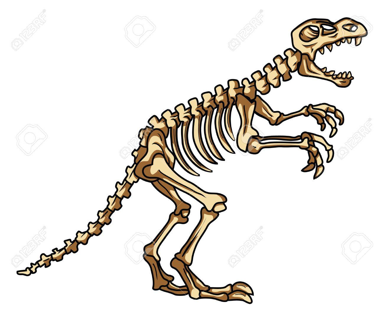 Fósil De Dinosaurio Ilustraciones Vectoriales, Clip Art Vectorizado ...