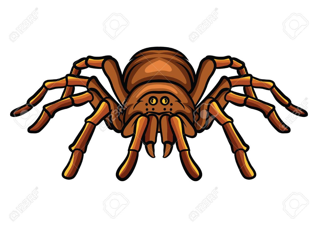 Tarantula Royalty Free Cliparts, Vectors, And Stock Illustration ...