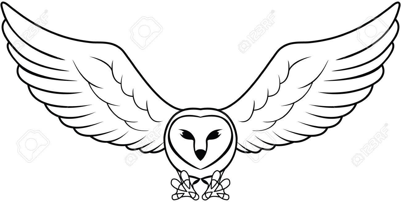 Owl - 46241830