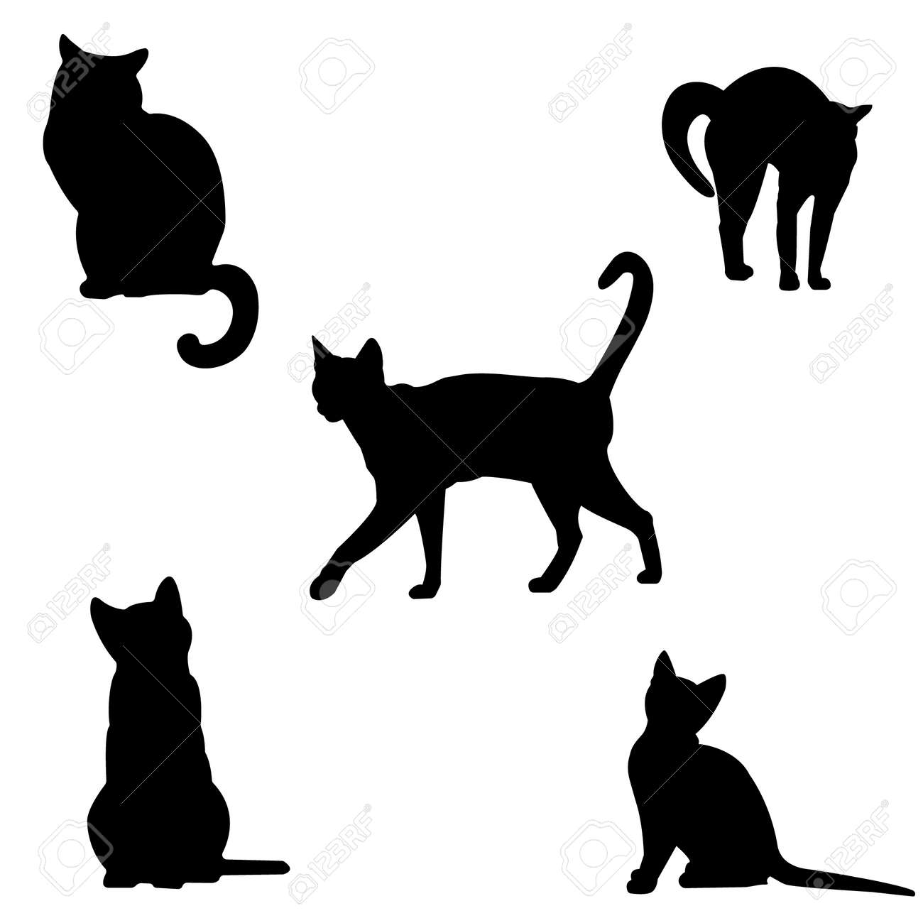 Set of cats silhouettes. Black contours of different cats on a white background. Isolated. Kittens . Vector illustration - 150582972