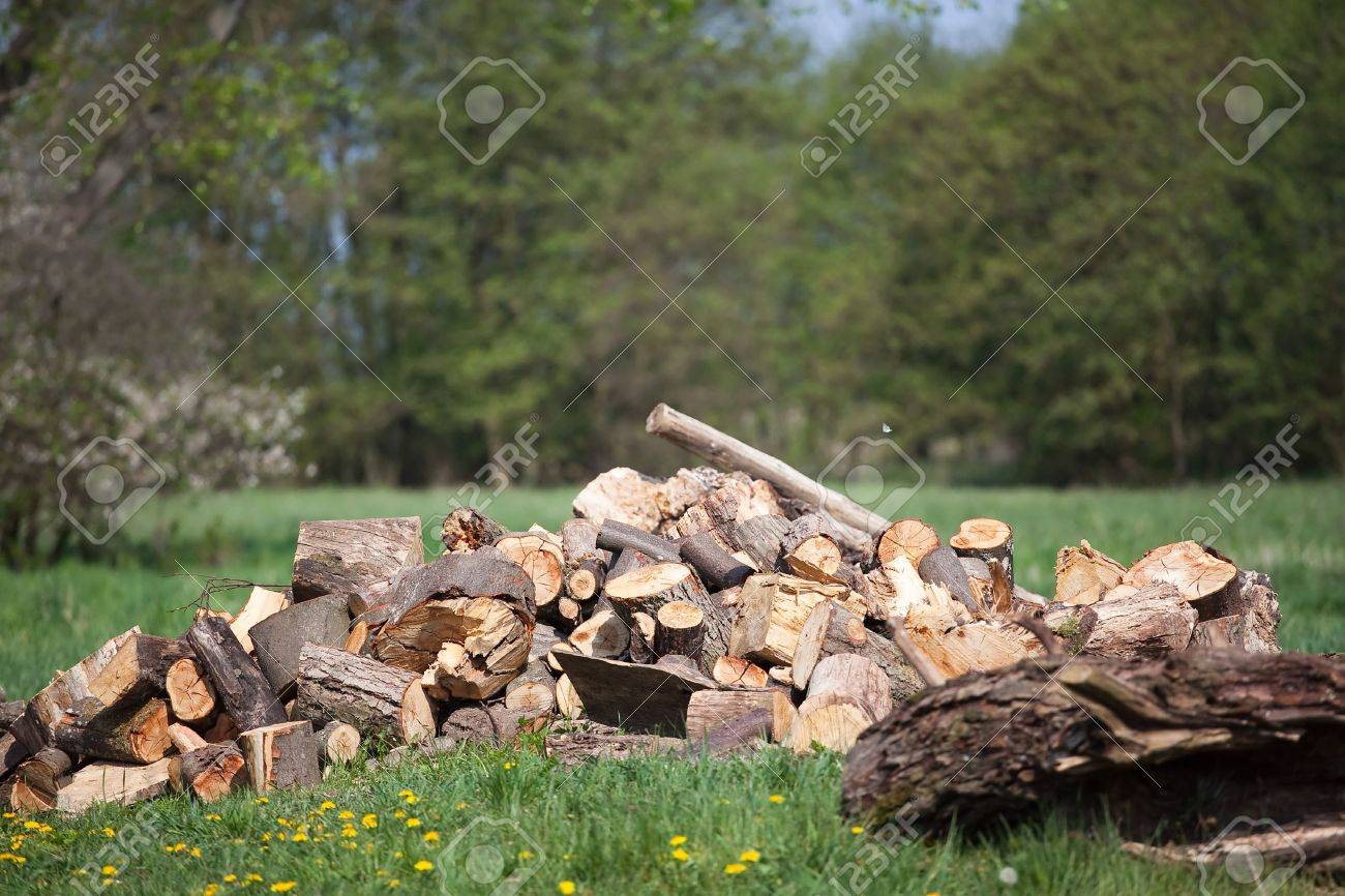 chocked wood let u0027s make a fireplace stock photo picture and