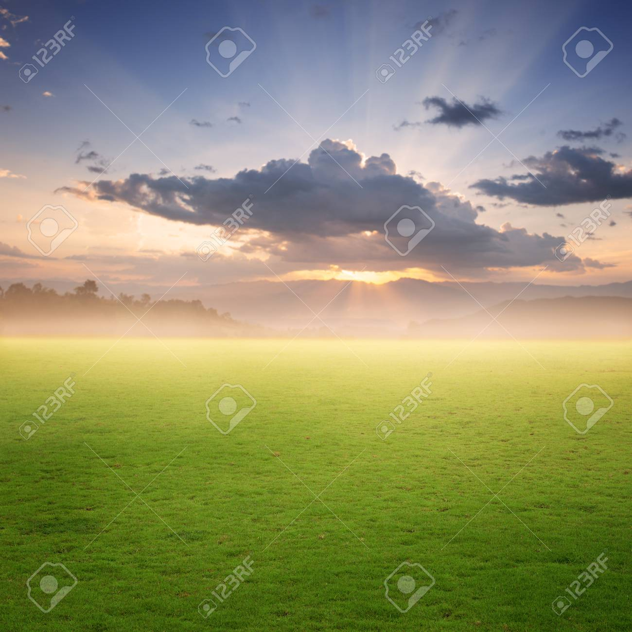 grass field sunset. Grass Fields And Sunset For Background Stock Photo - 44336925 Field E