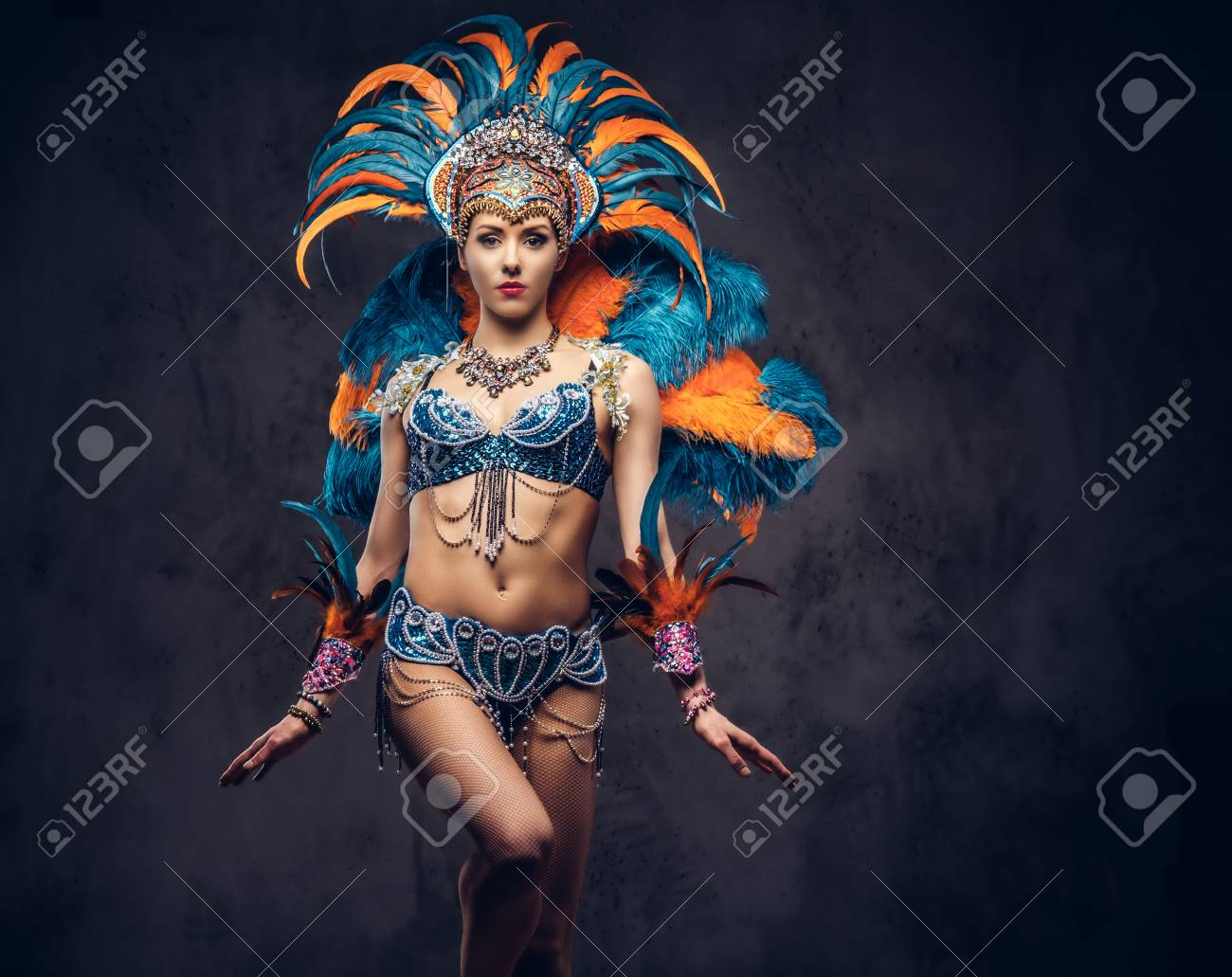 Studio portrait of a female in a colorful sumptuous carnival feather suit. Isolated on a dark background. - 100610057