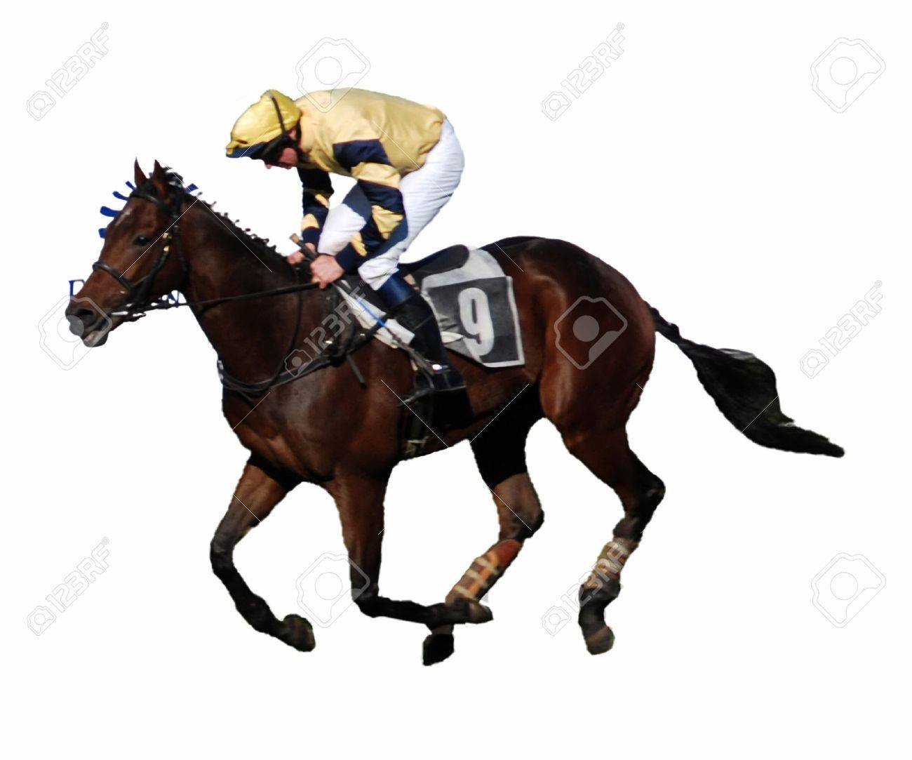 Jockey And His Horse Galloping To The Finish