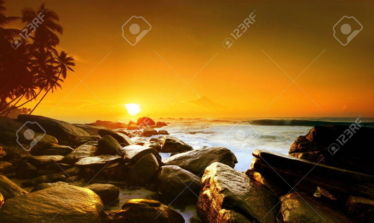 Beautiful colorful sunset over sea and boulders seen under the palms on Sri Lanka Stock Photo - 10014057