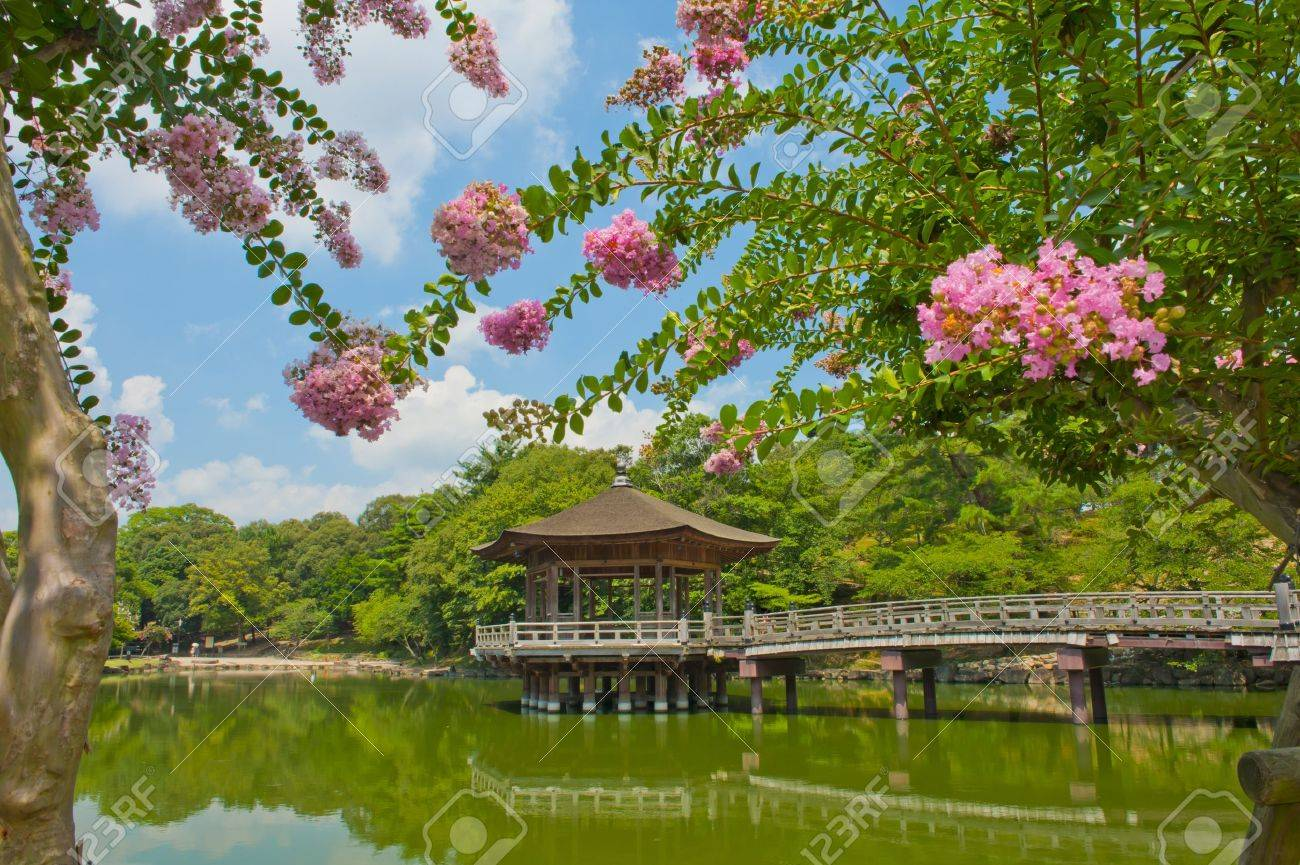 Beautiful Wooden Gazebo Over The Lake In Nara City Japan Stock Photo