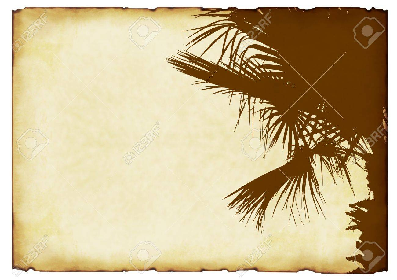 old paper background with elements of ornamentation Stock Photo - 9689865
