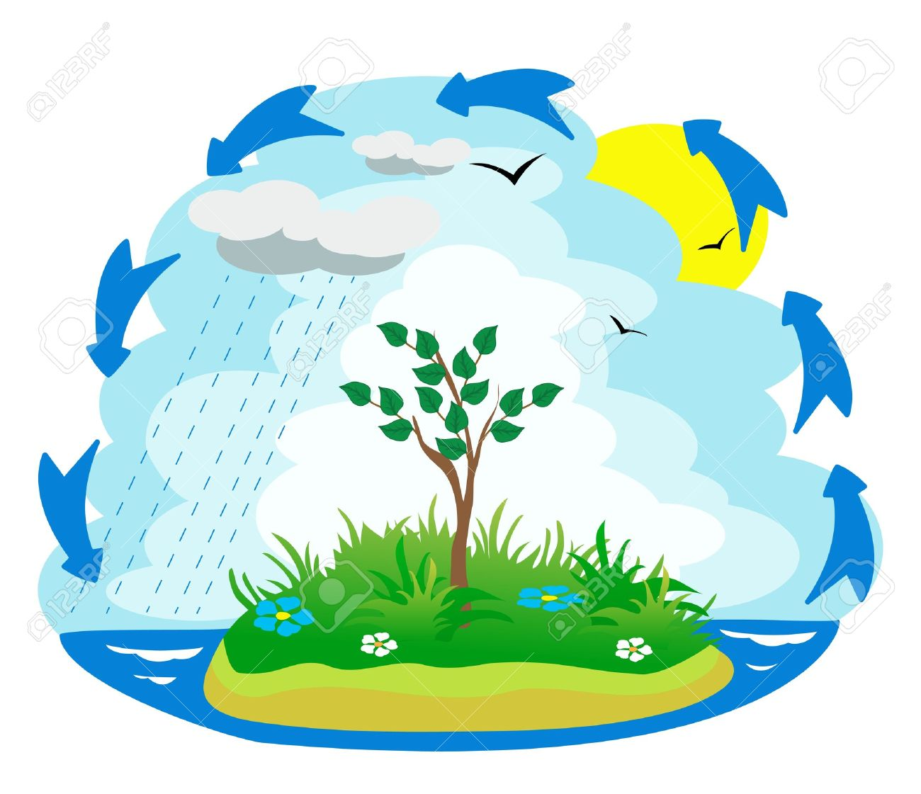 Illustration of the water cycle - 12680599